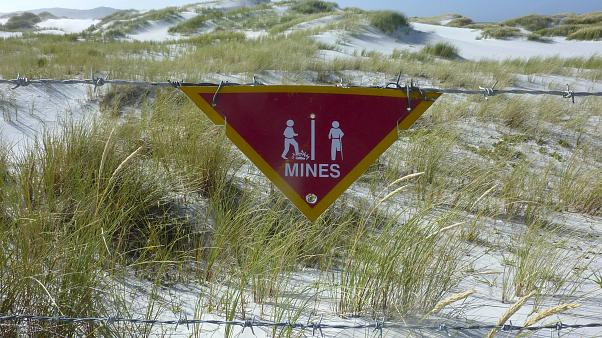 38 years after war, Falkland Islands cleared of mines; Islanders celebrate being 'landmine free'
