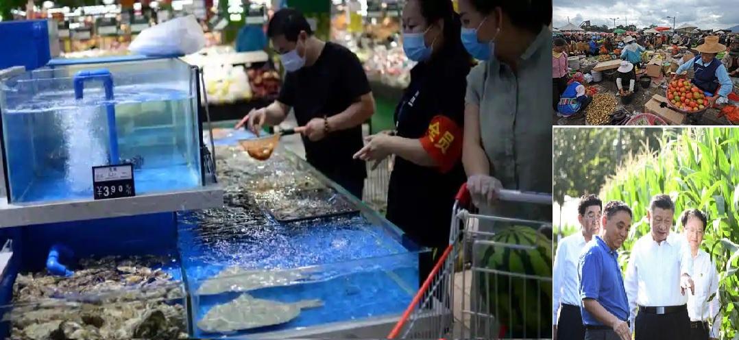 Internal Weakness of China – Food, Marine & Malacca